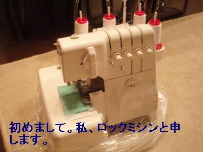 P8042065.jpg