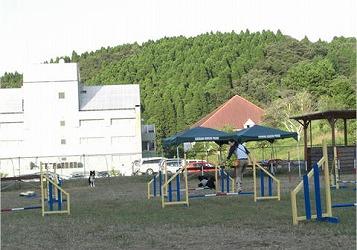 2008101322.jpg