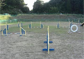 2008101324.jpg