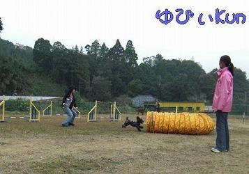 2008110315.jpg