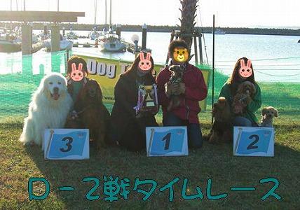 2008112221.jpg