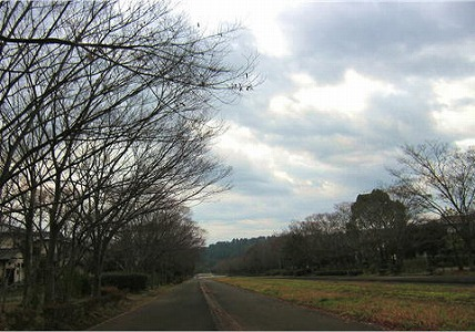 2008121301.jpg