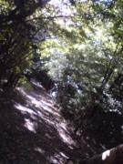 20071103PA0_0134.jpg