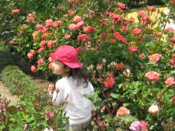 秘密の花園♡