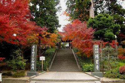 秋の鎌倉で、もじり狩りと、おいしいもの狩り。