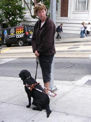 sfdog1.jpg
