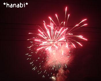 20070827hanabi2.jpg