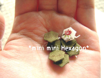20070910hexagon2.jpg