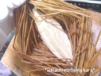 20080407tsuto-tofu3.jpg
