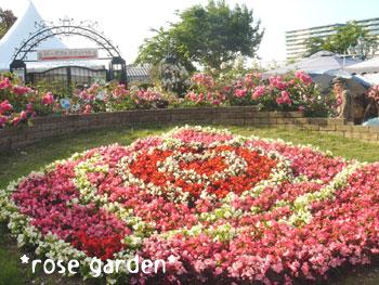 20080606rosegarden1.jpg