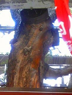 萱島神社55