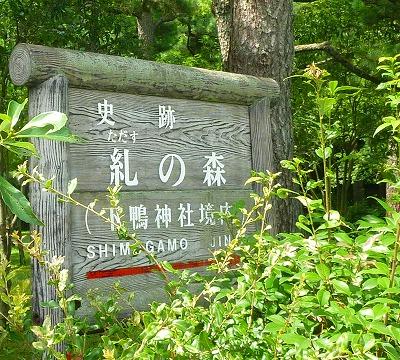 下鴨神社古本市006.JPG糺ノ森