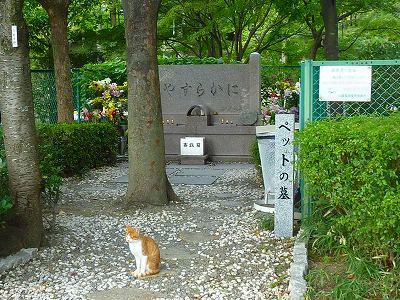 成田山006.JPG墓地公園
