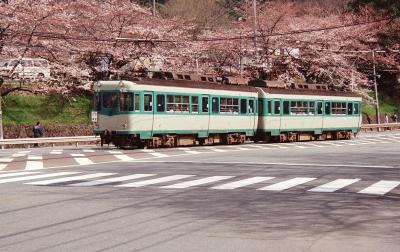 80形蹴上・桜