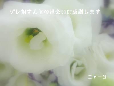 20090708-01