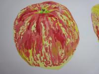 野菜果物イラスト2