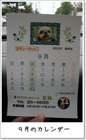 2008_0810_122213AA.jpg