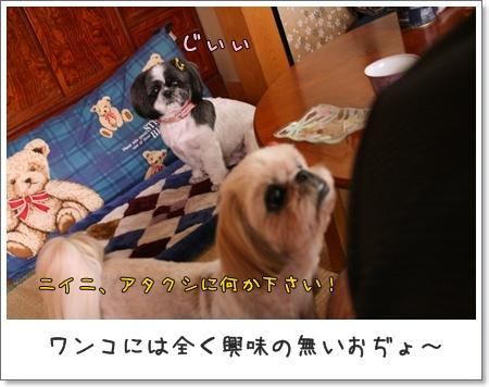 2008_0810_124805AA.jpg