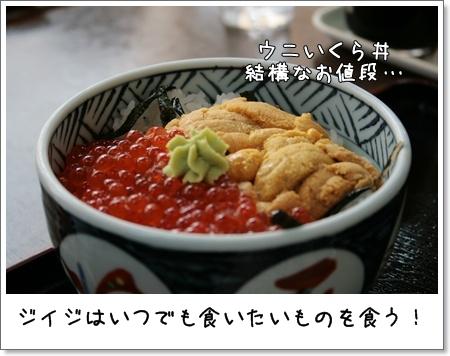 2008_0813_144816AA.jpg