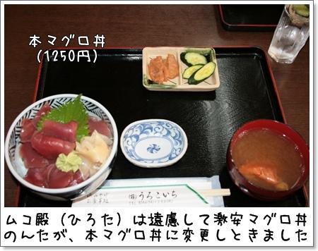 2008_0813_145033AA.jpg