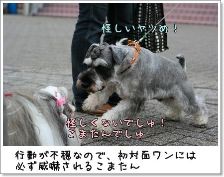 2008_0824_162604AA.jpg