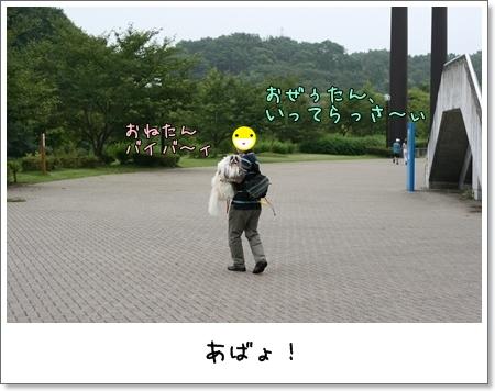 2008_0824_163129AB.jpg