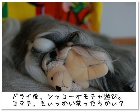2008_0830_165034AA.jpg