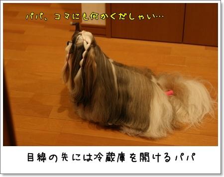 2008_0830_181209AB.jpg