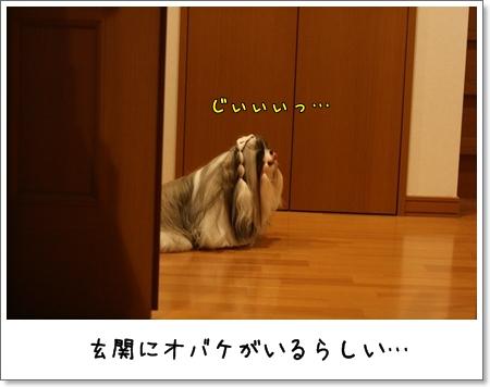 2008_0830_181519AB.jpg