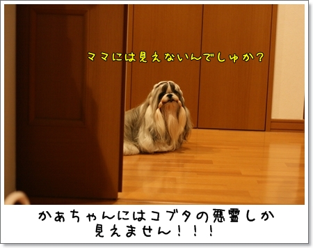 2008_0830_181526AB.jpg