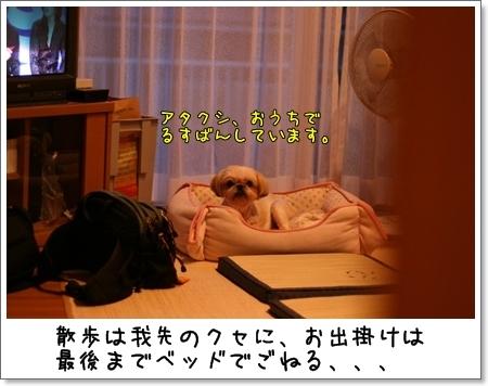 2008_0830_182323AB.jpg