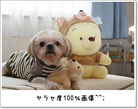 2008_0831_105518AA.jpg