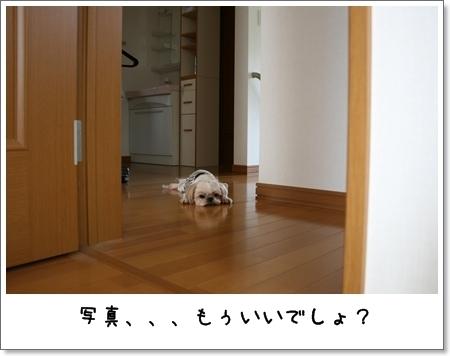 2008_0831_112946AA.jpg
