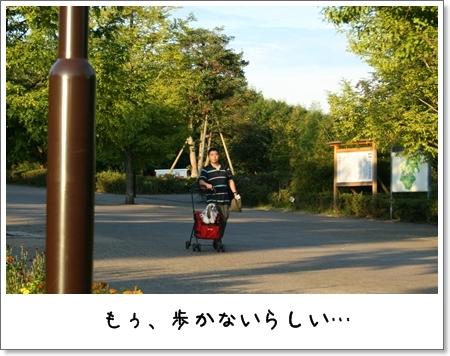 2008_0831_173119AA.jpg