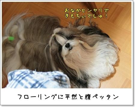 2009_0223_191824AA.jpg