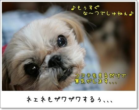 2009_0223_191850AA.jpg