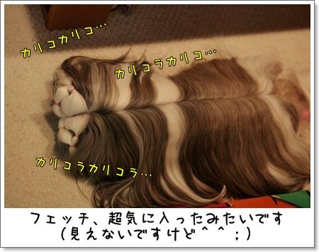 2009_0224_204001AA.jpg