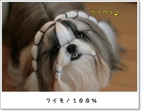 2009_0225_073225AA.jpg