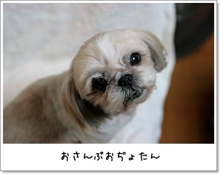 2009_0225_192306AA.jpg