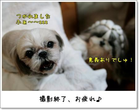 2009_0225_192603AA.jpg