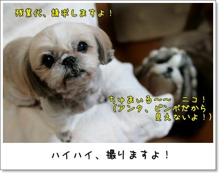 2009_0225_192615AA.jpg