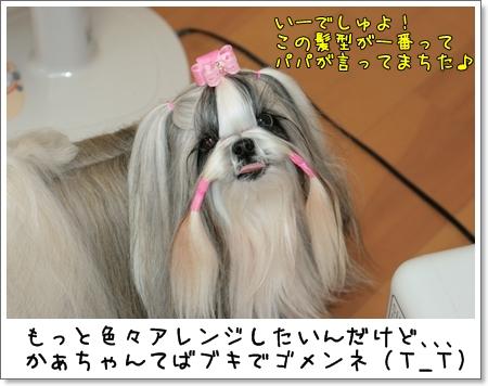 2009_0228_164914AA.jpg