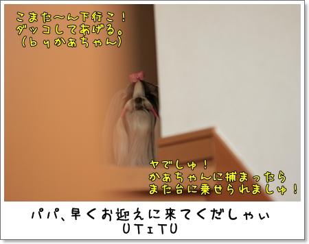 2009_0228_165128AA.jpg