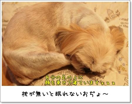 2009_0228_213137AA.jpg