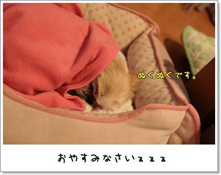 2009_0228_213420AA.jpg
