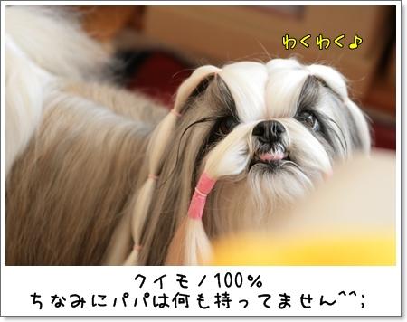 2009_0301_125418AA.jpg