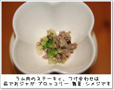 2009_0301_194616AA.jpg