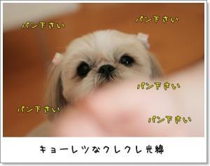 2009_0307_132615AA.jpg