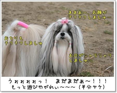 2009_0308_143419AA.jpg