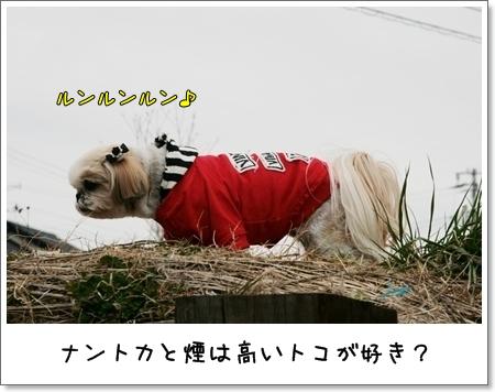 2009_0308_144040AA.jpg